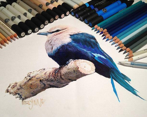 リアル絵の描き方:樹の枝にとまっている鳥