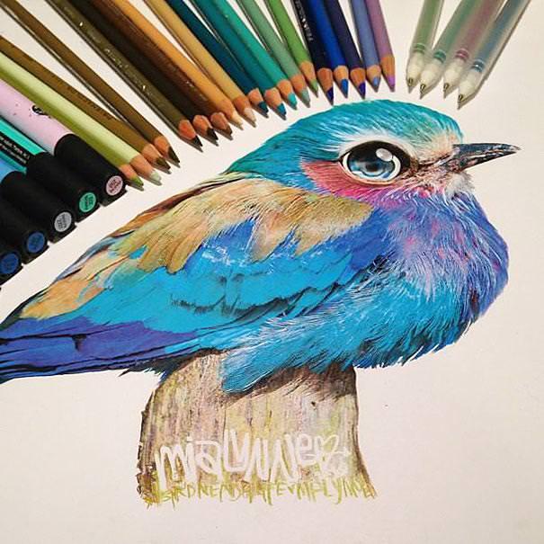 リアル絵の描き方:カラフルインコ