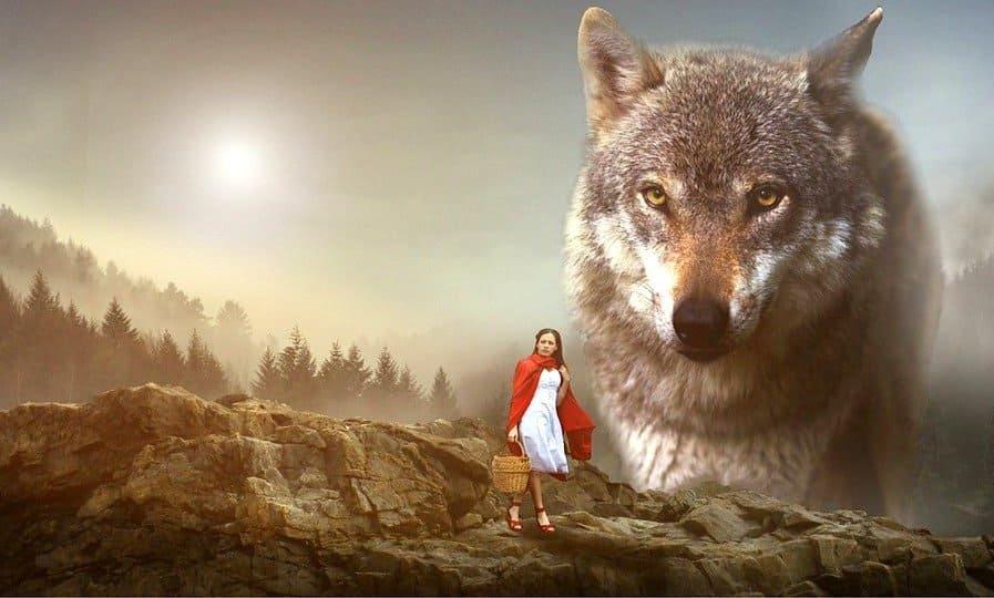 嘘つき狼のアルカポネ