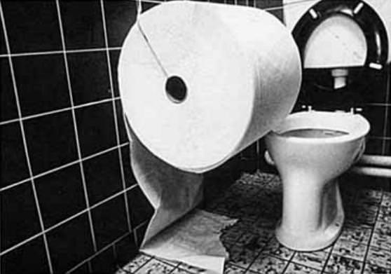 面白トイレ:大きすぎるトイレットペーパーが設置