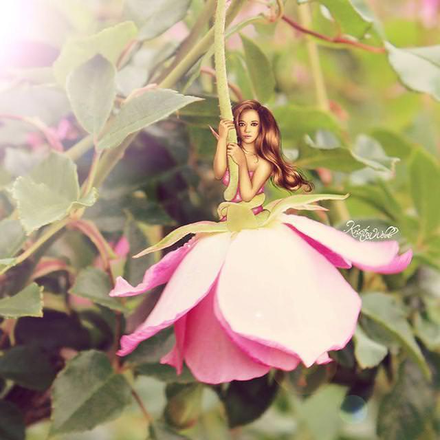美女たちのコラボ:花びらの妖精
