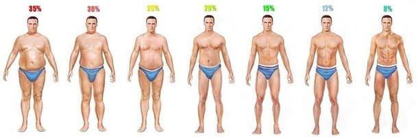 男性の体脂肪率一覧