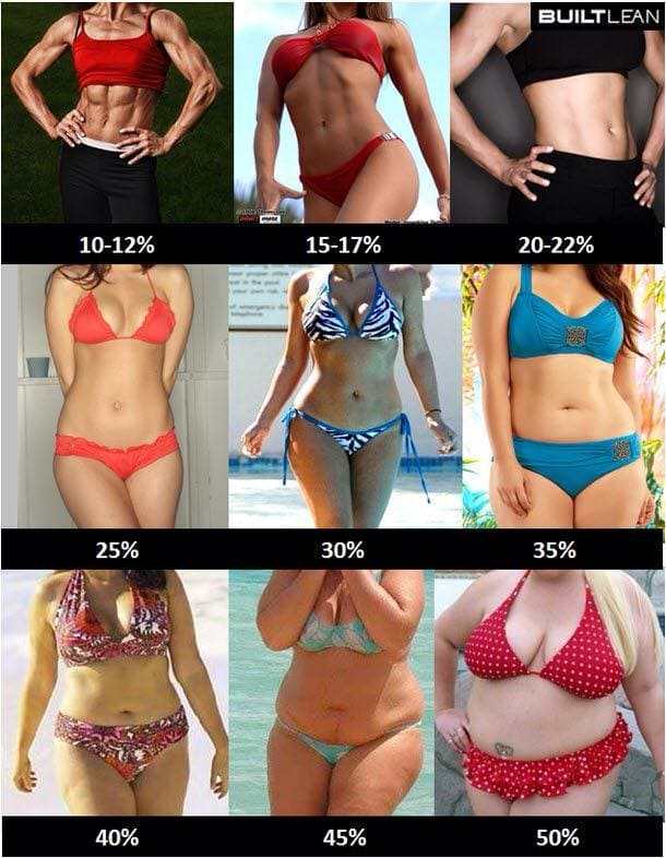 https://hotnews8.net/contents/body-fat-percentage/20-1.jpg