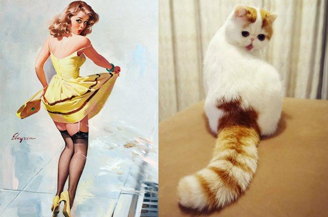 動物とそっくりな画像:見返り美人だニャ〜