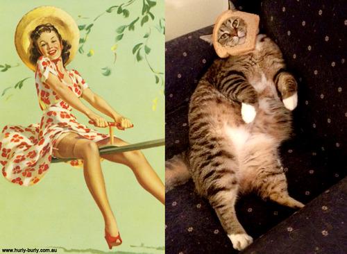 動物とそっくりな画像:帽子がないから