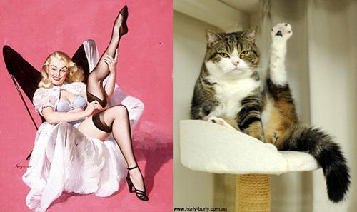 動物とそっくりな画像:美脚をみせつけるニャ〜