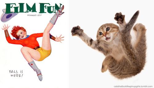 動物とそっくりな画像:すごい勢いでジャンプだニャ〜