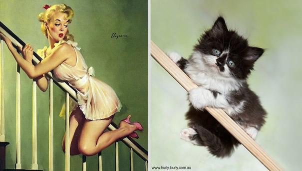 動物とそっくりな画像:斜めの棒にぶら下がっているニャ〜