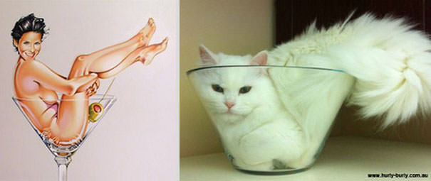 動物とそっくりな画像:ガラスコップの中に入ってみたニャ〜