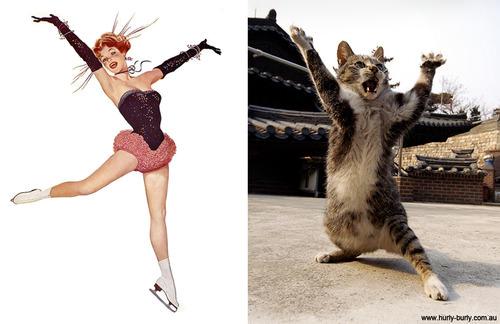 動物とそっくりな画像:バンザーイだニャ〜