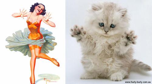 動物とそっくりな画像:イエ〜イ、みんなノッてるニャ〜?