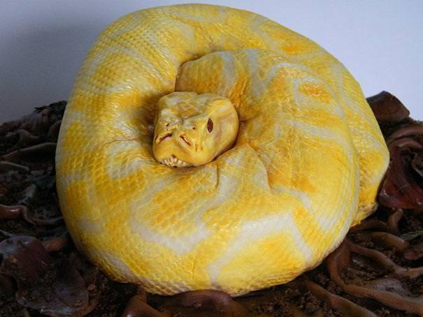 創作ケーキ:蛇