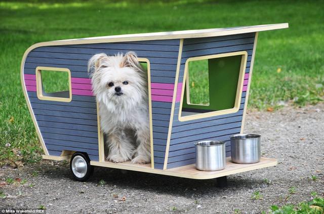 お洒落な犬小屋:愛犬用キャンピングカー(ワイド)