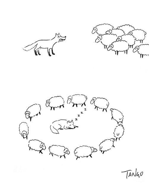 オチが衝撃的な漫画:羊の群れを整列させる牧羊犬