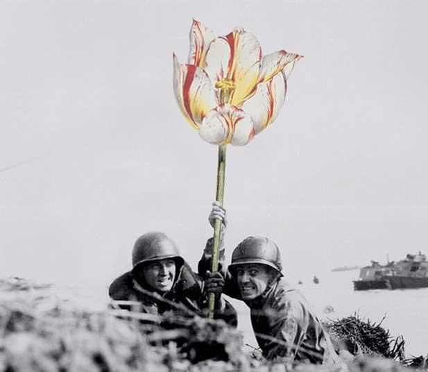 銃に花を咲かせる、平和への願い2