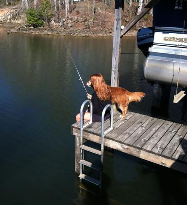 決定的瞬間:釣りをするイヌ