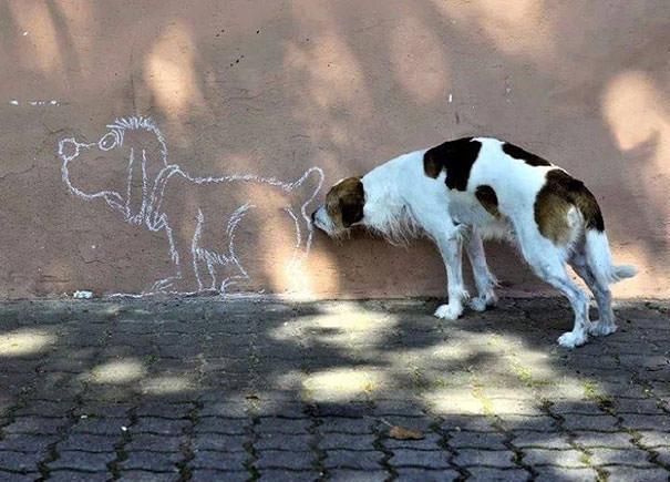 決定的瞬間:絵で描いたイヌのお尻をクンクン