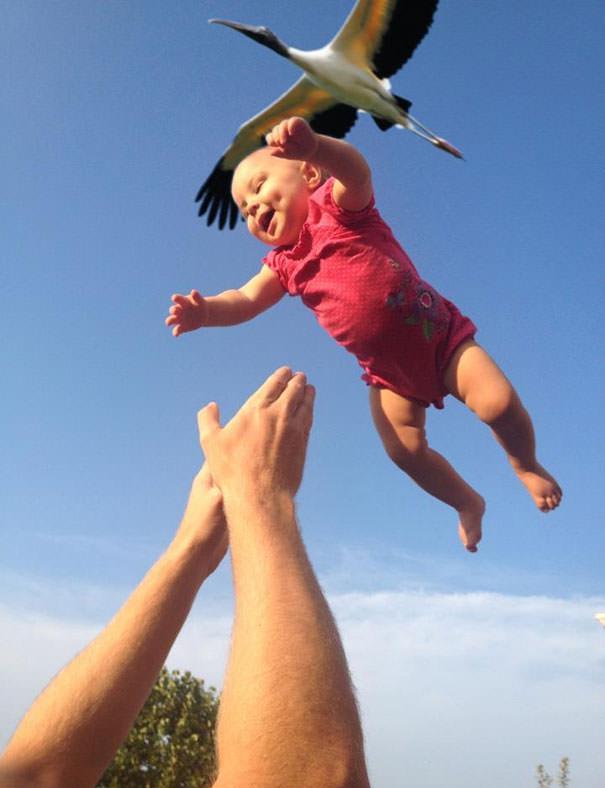 決定的瞬間:コウノトリが赤ちゃんを運んできた〜!
