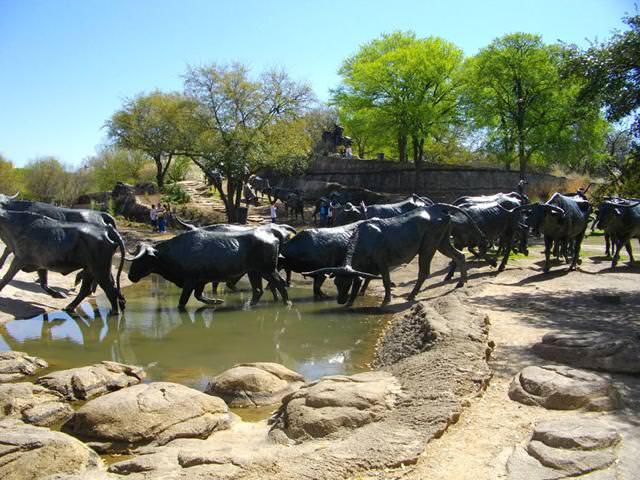 現代アートのオブジェ:水辺を渡る水牛の群れ