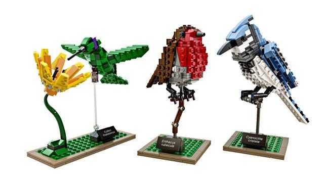 LEGO Birdsのパッケージに描かれている鳥たち