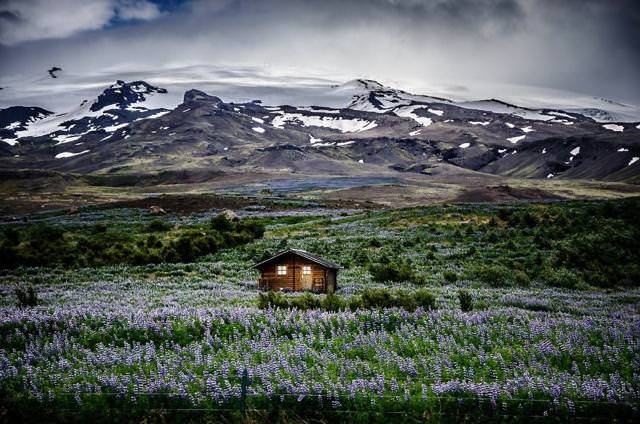 高原にポツンとたたずむログハウス(アイスランド-Mountain Meadow Retreat)