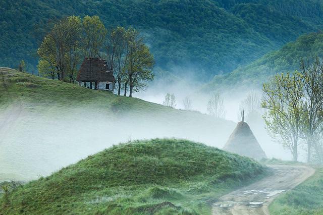 深い森の中にポツンとたたずむ家(ルーマニア-Apuseni Mountains)
