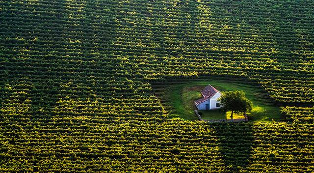 森の奥にポツンと存在する家(ハンガリー)