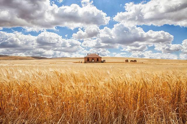 畑の中にポツンとたたずむ家(オーストラリア-バリア・ハイウェイ)