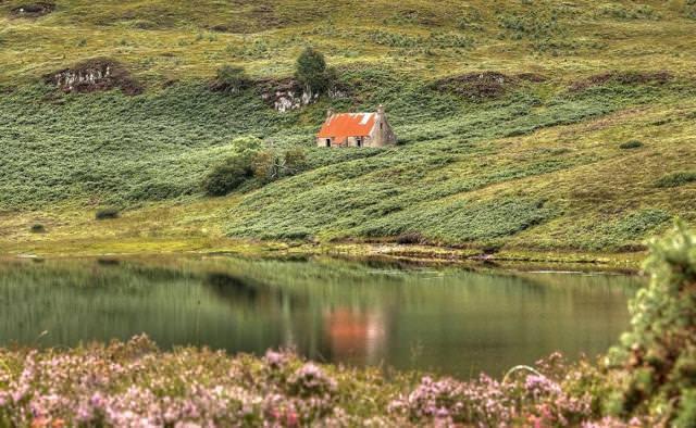 草木の中にポツンとたたずむ家(スコットランド-Wester Ross)