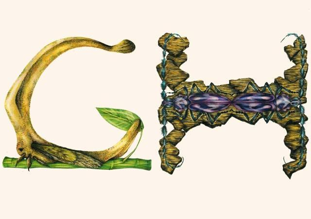 キモかわいい英字フォント【G,H】