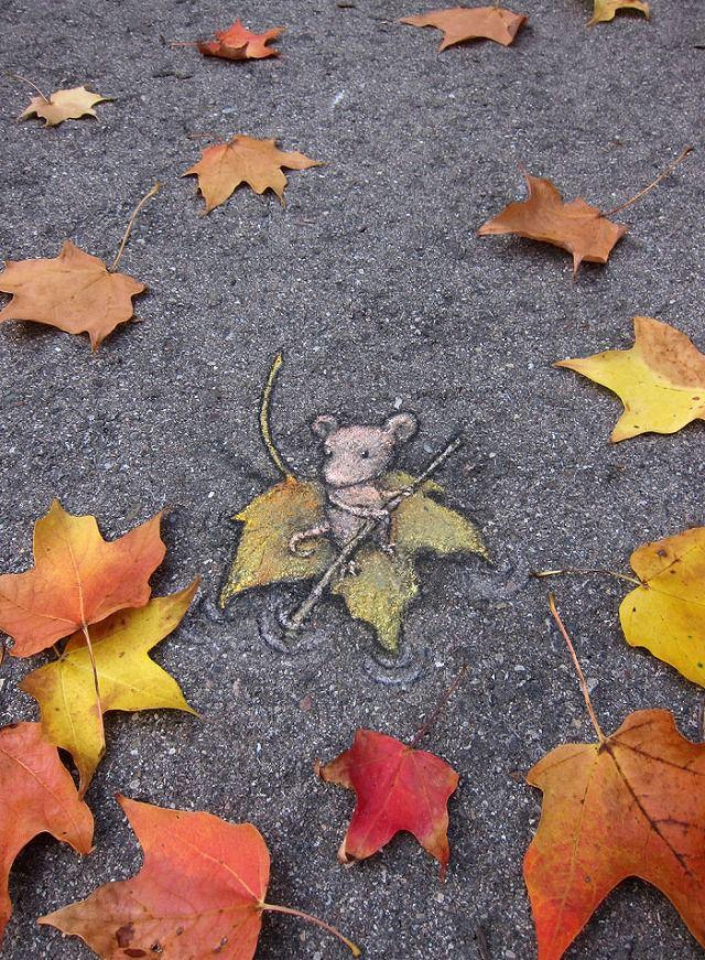 上手いストリートアート:落ち葉を舟にするネズミ