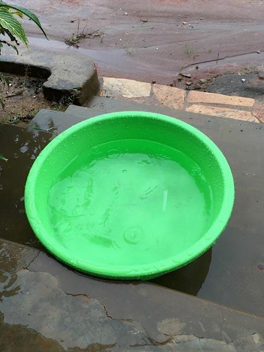 ウガンダで雨水を溜める
