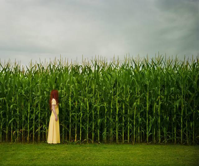 トウモロコシ畑の脇で佇む女性