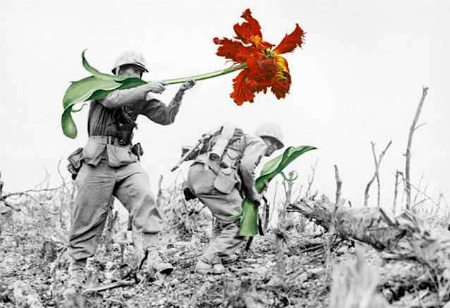 銃に花を咲かせる!平和への願いが込められた芸術作品(戦争写真)5選