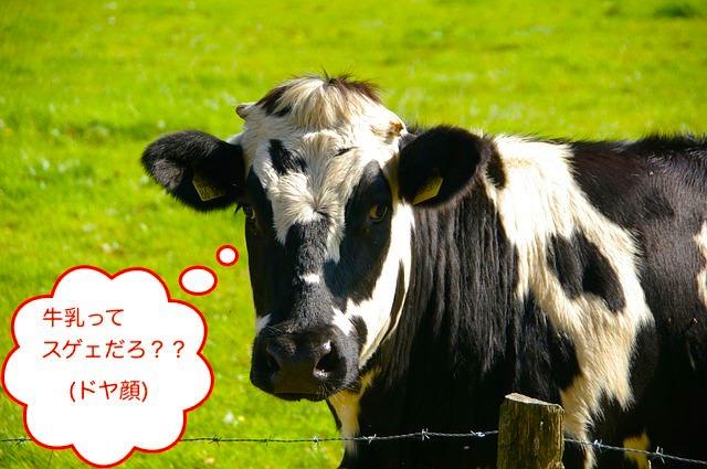 賞味期限切れ牛乳の利用法5つ!シミ抜き・靴磨き・顔パックなど