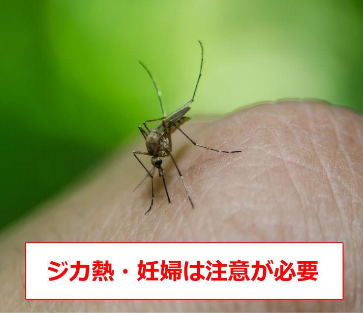 ジカ熱の症状・感染経路・妊婦への影響・予防法について
