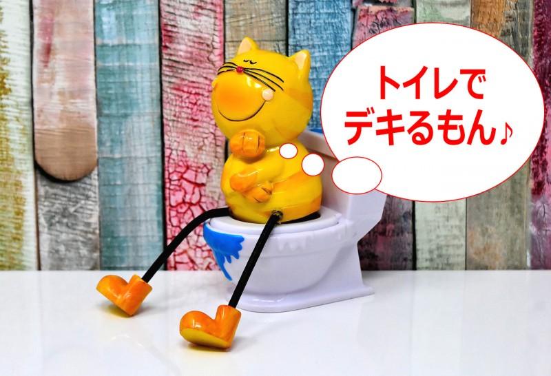 「補助便座なし」でトイレトレーニングするメリットと トイトレ方法