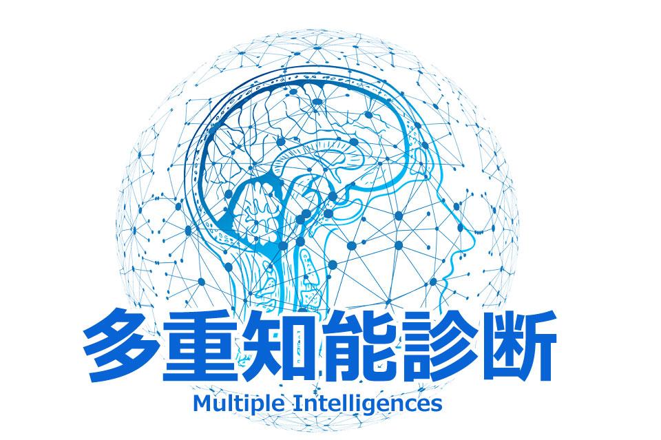 多重知能の診断テストで、9つの知能(得意・不得意)を分析