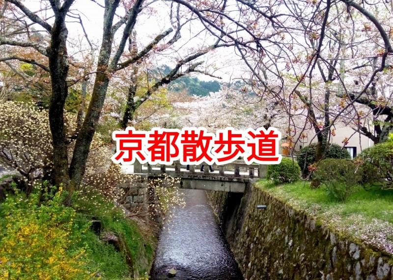 【京都散歩道】祇園四条~平安神宮・哲学の道