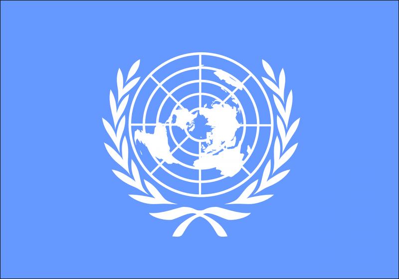国際連合(UN)とディープステート
