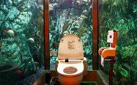 トイレ 面白・トイレ 面白画像