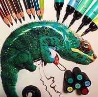 色鉛筆画 リアル 描き方・色鉛筆 リアル