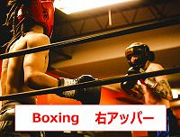 ボクシングのテクニック