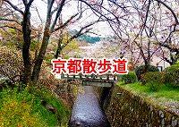 京都 散歩 自然・京都 散歩コース