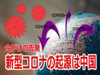 新型コロナウイルス 起源・新型コロナウイルス 起源 中国