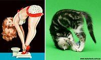 そっくり 画像・動物 そっくり 画像