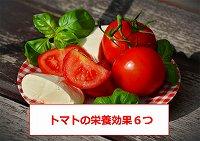 トマト 栄養 効果・トマト 健康 効果